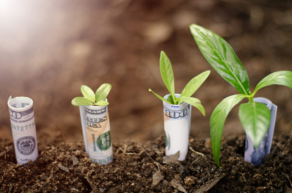 investing in local private equity